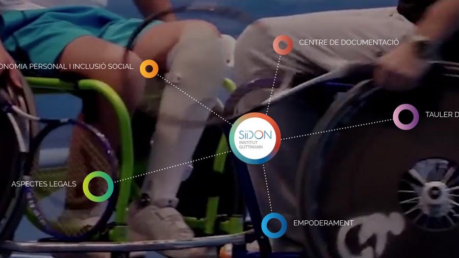 Colabora con el portal web SiiDON sobre el mundo de la discapacidad de origen neurológico
