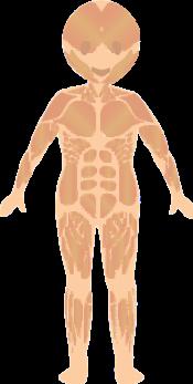 Rehapedia - La importància de la bipedestació - Rehagirona